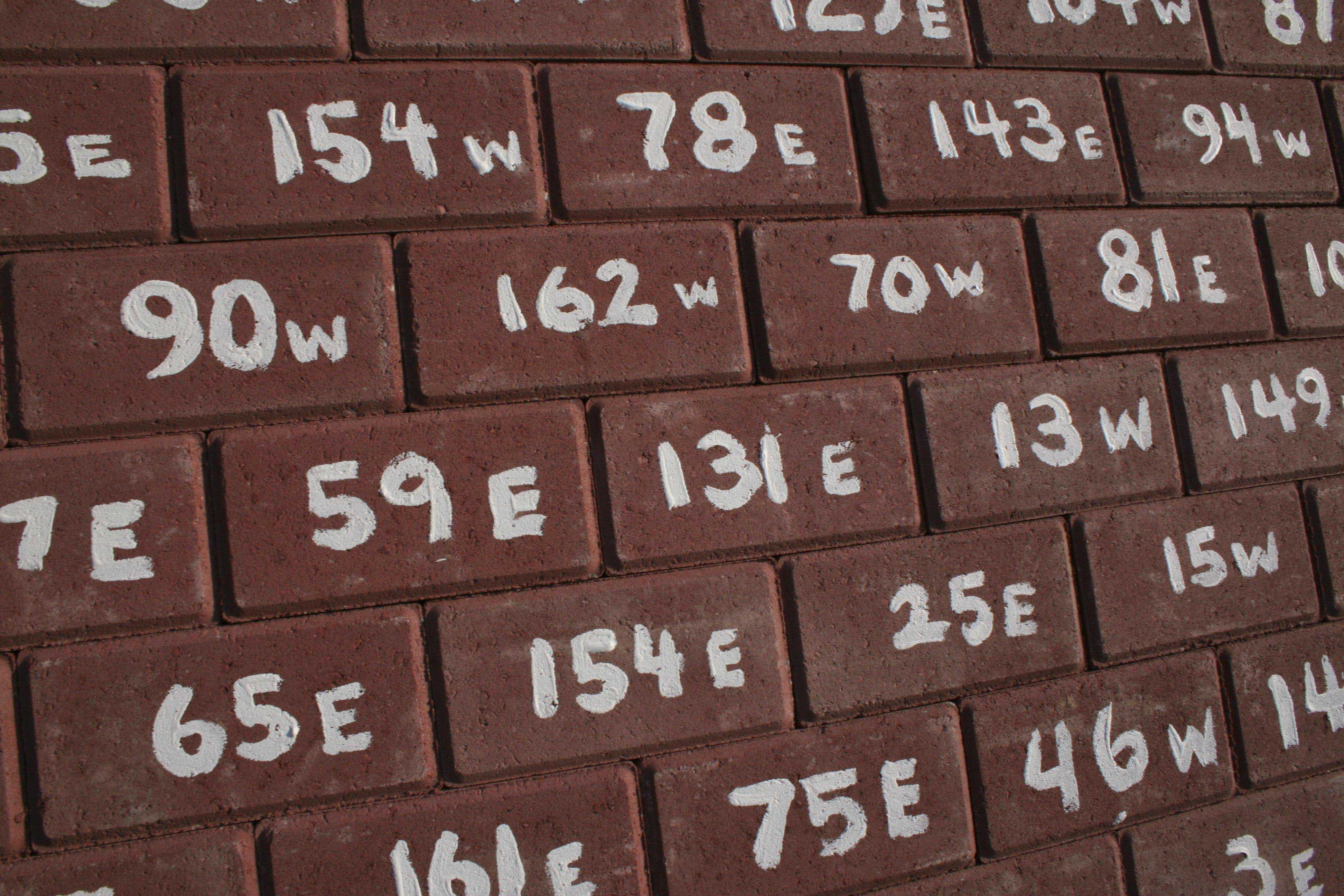 Life Wall (Brick detail)